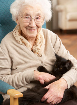 Elderly woman and cat